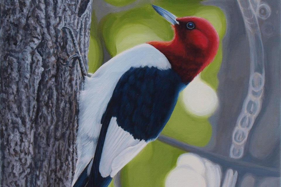 Edit Artwork | Wallhanging by Ron Plaizier | Artists for Conservation