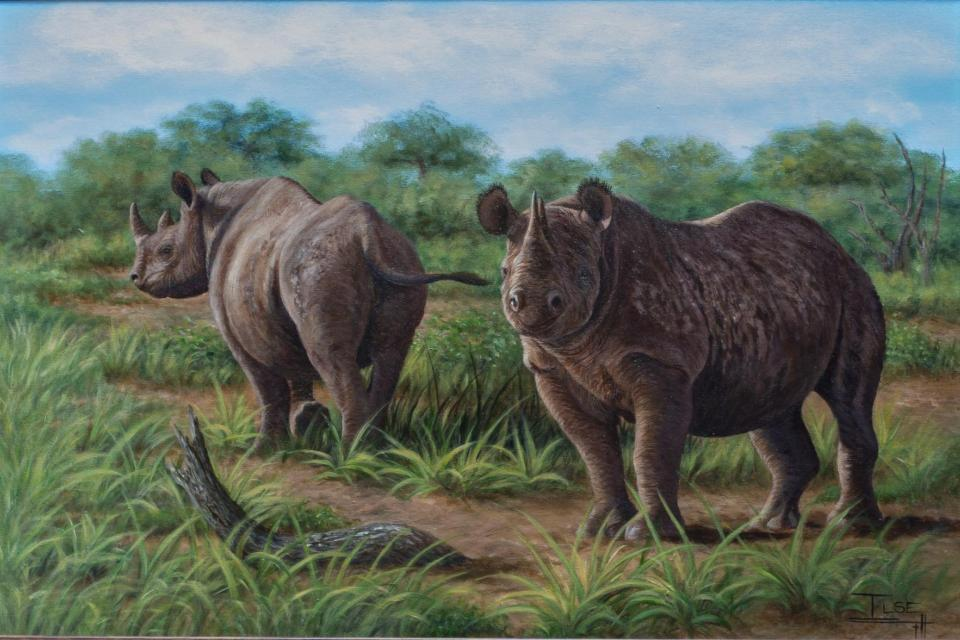 <em>Edit Conservation Project/Cause</em> The ant-poaching unit in the Bubye Valley Conservancy-Zimbabwe - A painting to raise funds | Ilse de Villiers