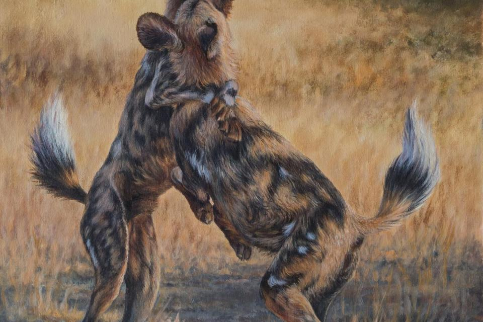 Create Conservation Project/Cause - Donating an original painting | Ilse de Villiers
