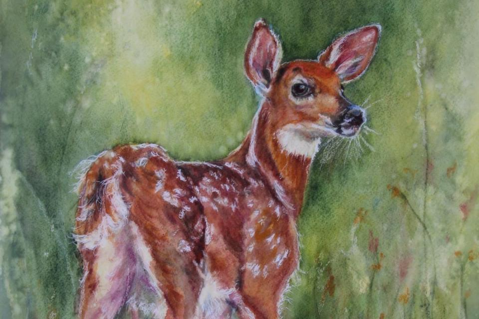 Add Artwork | Wallhanging by Carrie Goller | Artists for Conservation