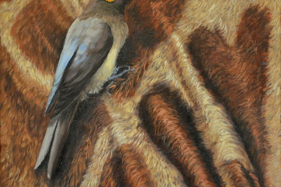   Wallhanging by Suzanne Barrett Justis   Artists for Conservation