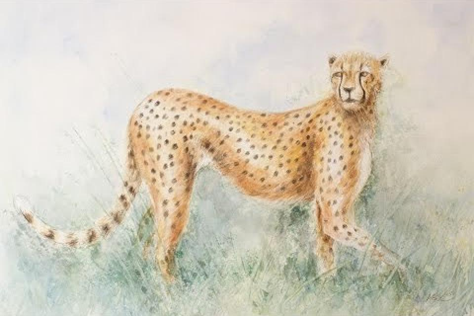 Anne Corless Painting with Jackson's Watercolour