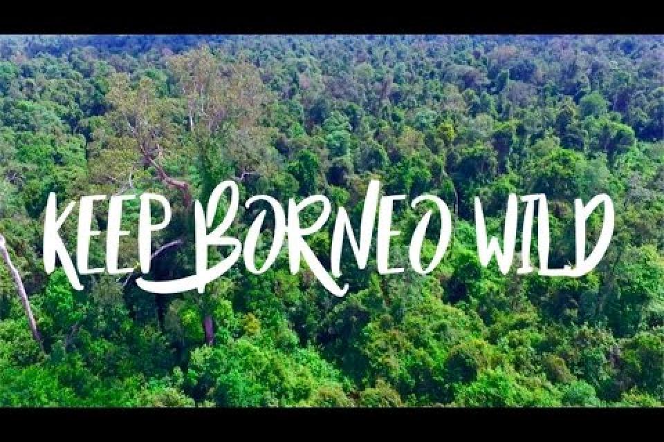 Keep Borneo Wild