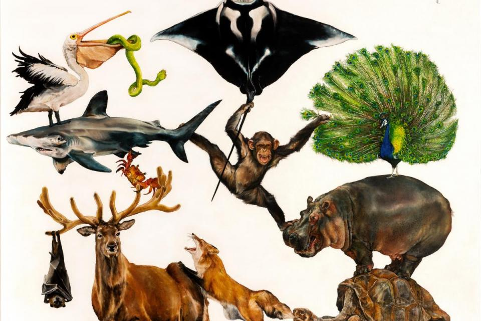 Edit Artwork   Wallhanging by Sailev   Artists for Conservation