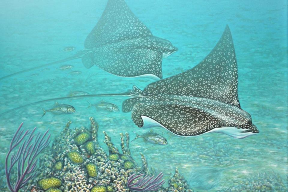 Edit Artwork | Wallhanging by Curtis Atwater | Artists for Conservation