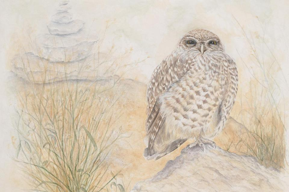 Edit Artwork | Wallhanging by Judy Studwell | Artists for Conservation