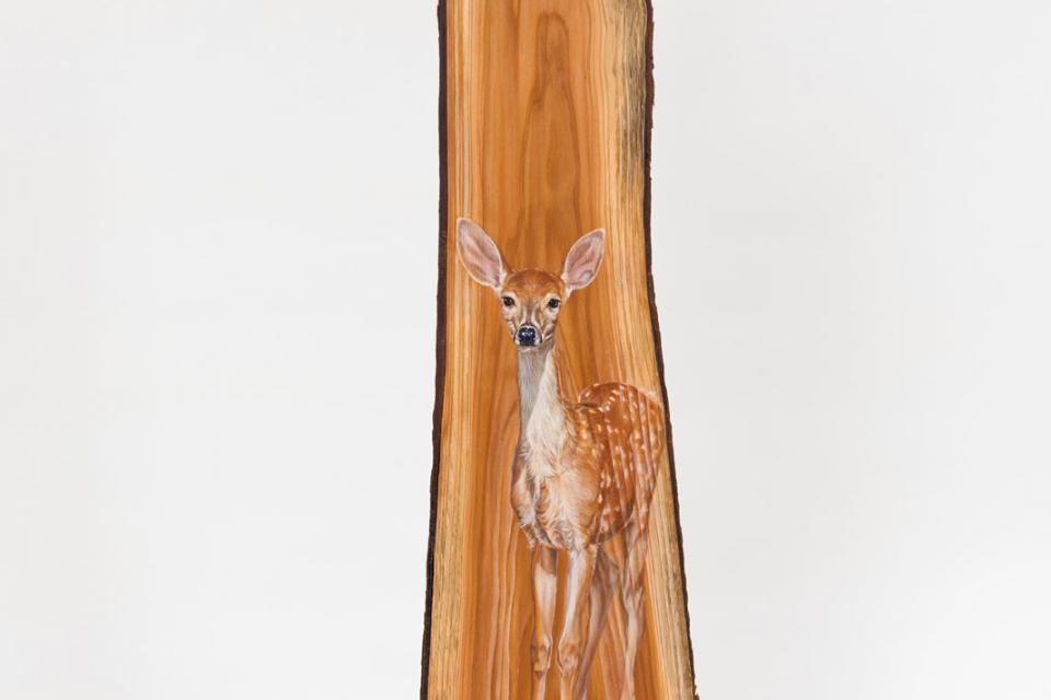 Edit Artwork | Sculpture by Susan Neilson | Artists for Conservation