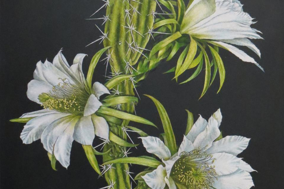 Add Artwork | Wallhanging by Susan Morris | Artists for Conservation