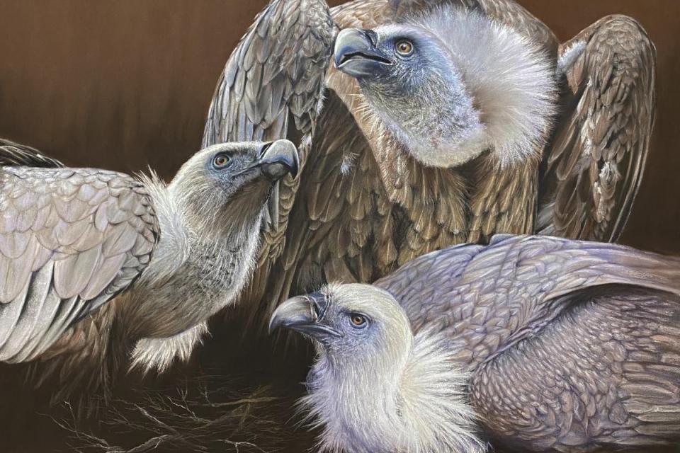 Edit Artwork   Wallhanging by Sandra Jones   Artists for Conservation