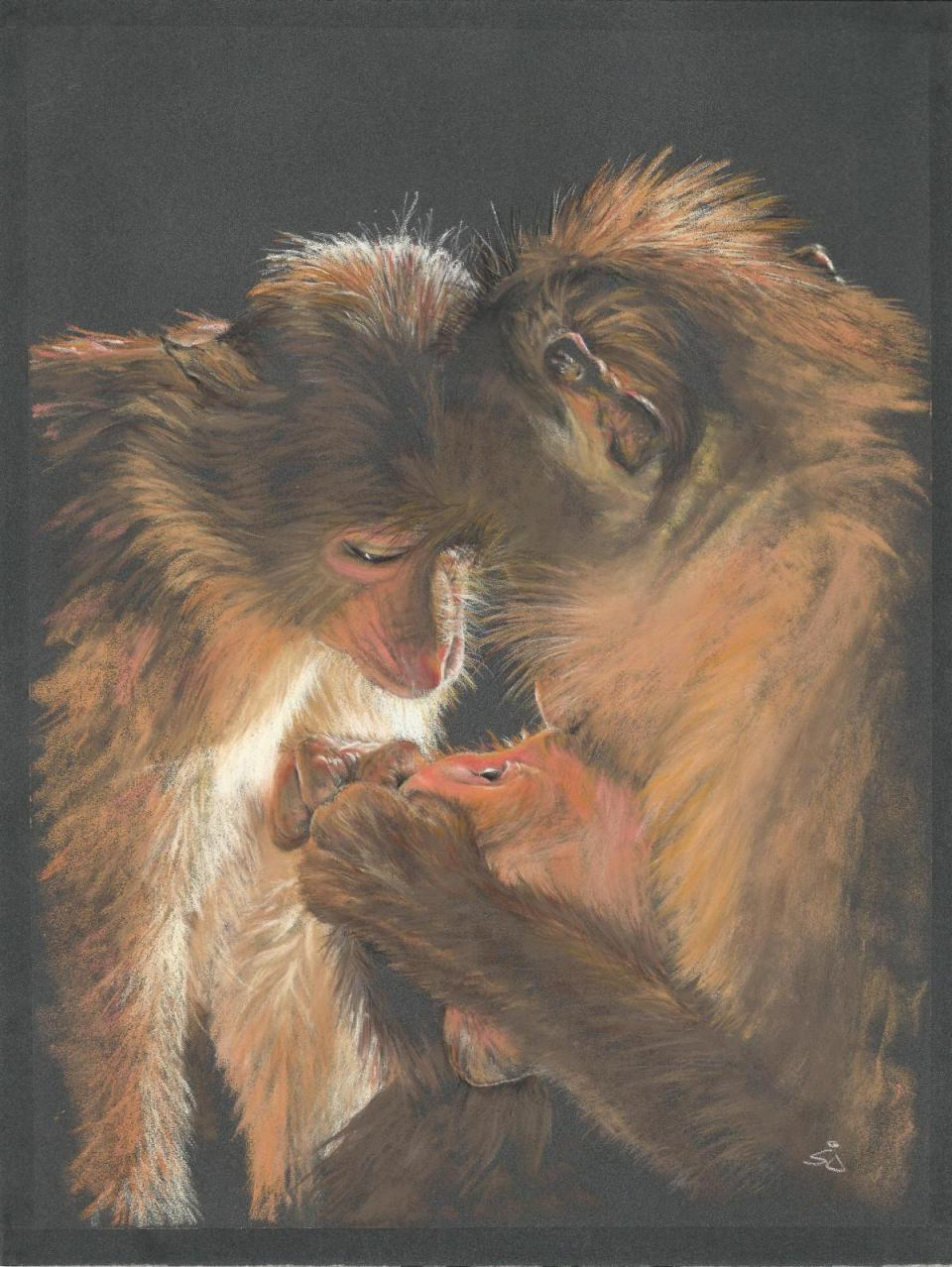 Edit Artwork | Wallhanging by Sandra Jones | Artists for Conservation