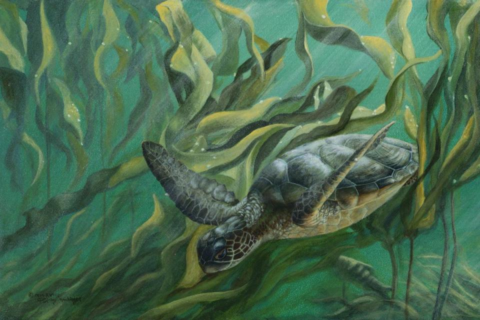   Wallhanging by Cindy Sorley-Keichinger   Artists for Conservation
