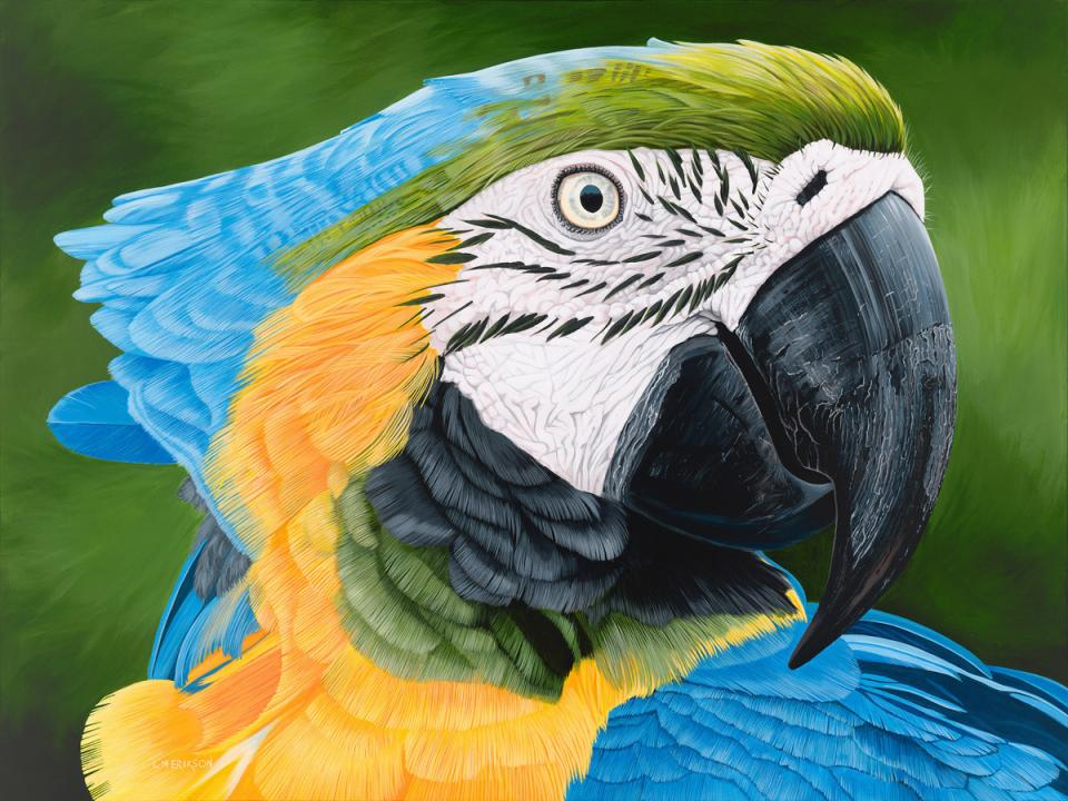 Edit Artwork   Wallhanging by Lynn Erikson   Artists for Conservation