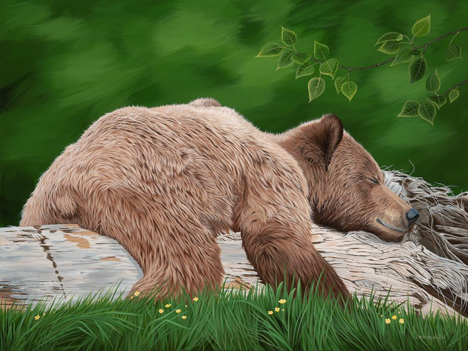 | Wallhanging by Lynn Erikson | Artists for Conservation