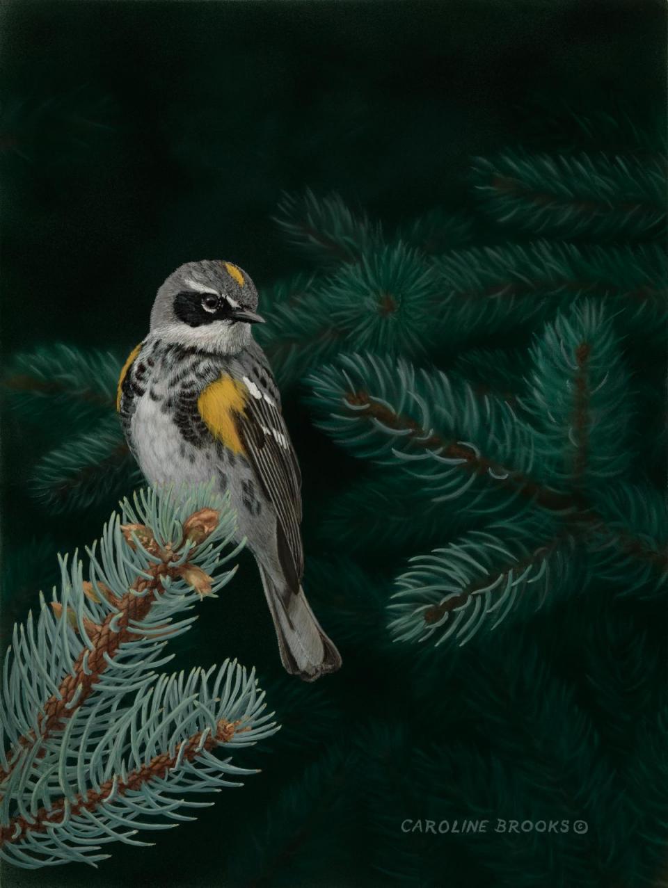 Edit Artwork | Wallhanging by Caroline Brooks | Artists for Conservation
