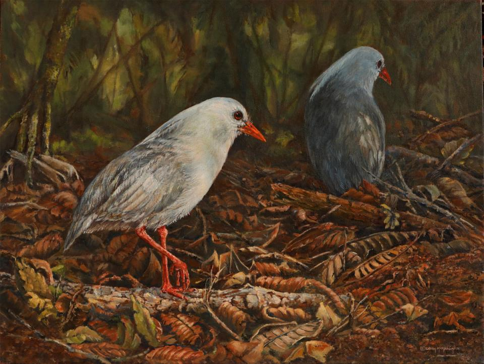 Edit Artwork | Wallhanging by Candy McManiman | Artists for Conservation