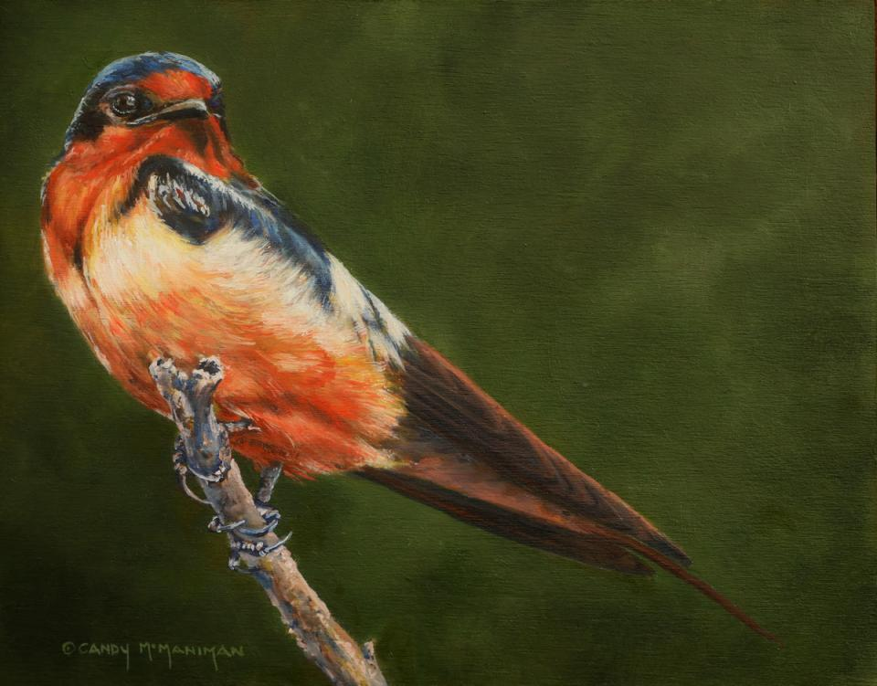 Edit Artwork   Wallhanging by Candy McManiman   Artists for Conservation