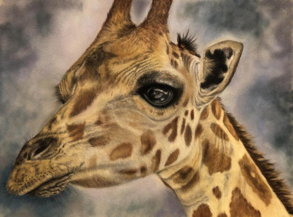 Add Artwork | Wallhanging by Holly Cannon | Artists for Conservation