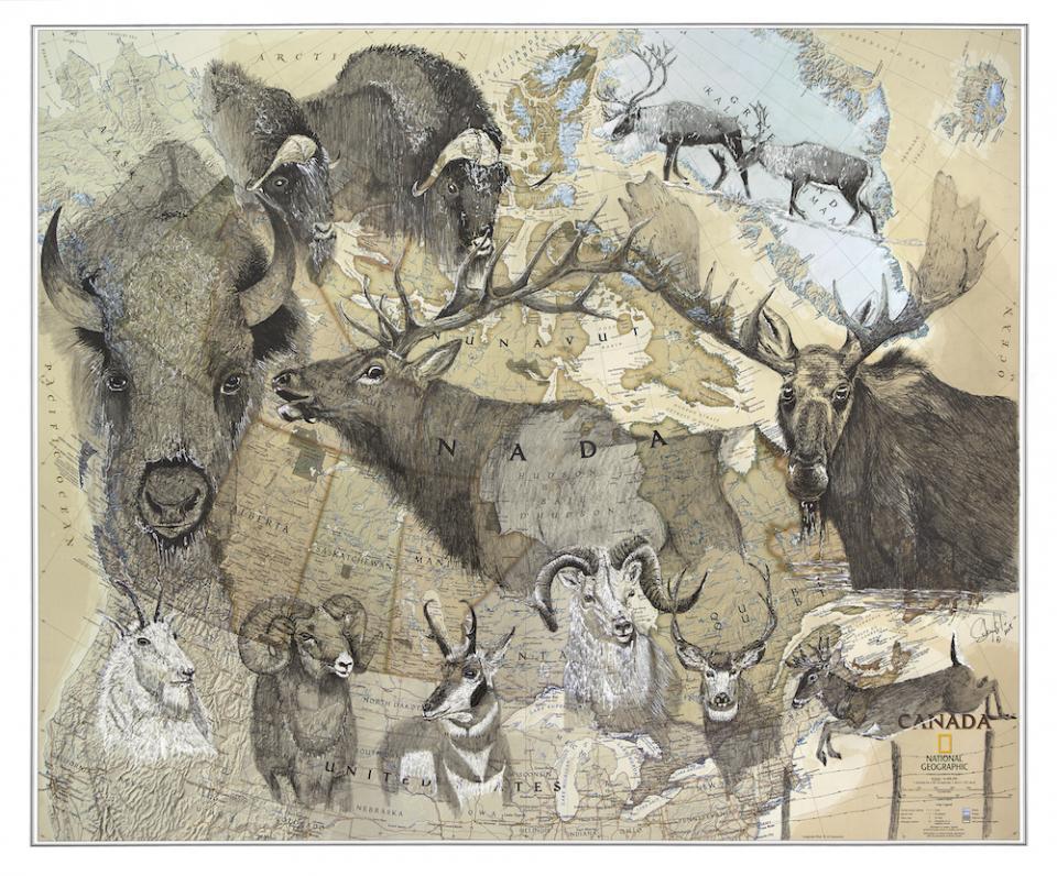 Edit Artwork | Wallhanging by Stuart Arnett | Artists for Conservation