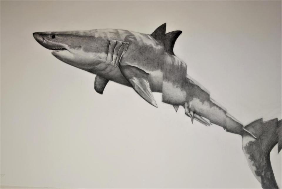 Edit Artwork | Wallhanging by Jennifer Pelham | Artists for Conservation