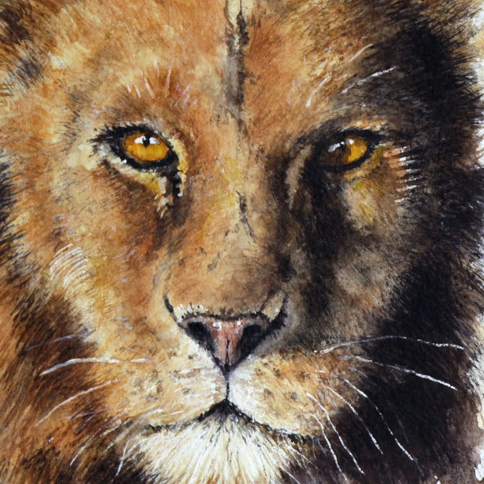 | Wallhanging by Norbert Gramer | Artists for Conservation