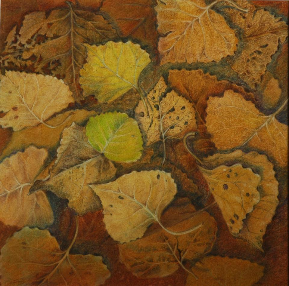 Add Artwork | Wallhanging by Linda Harrison-Parsons | Artists for Conservation