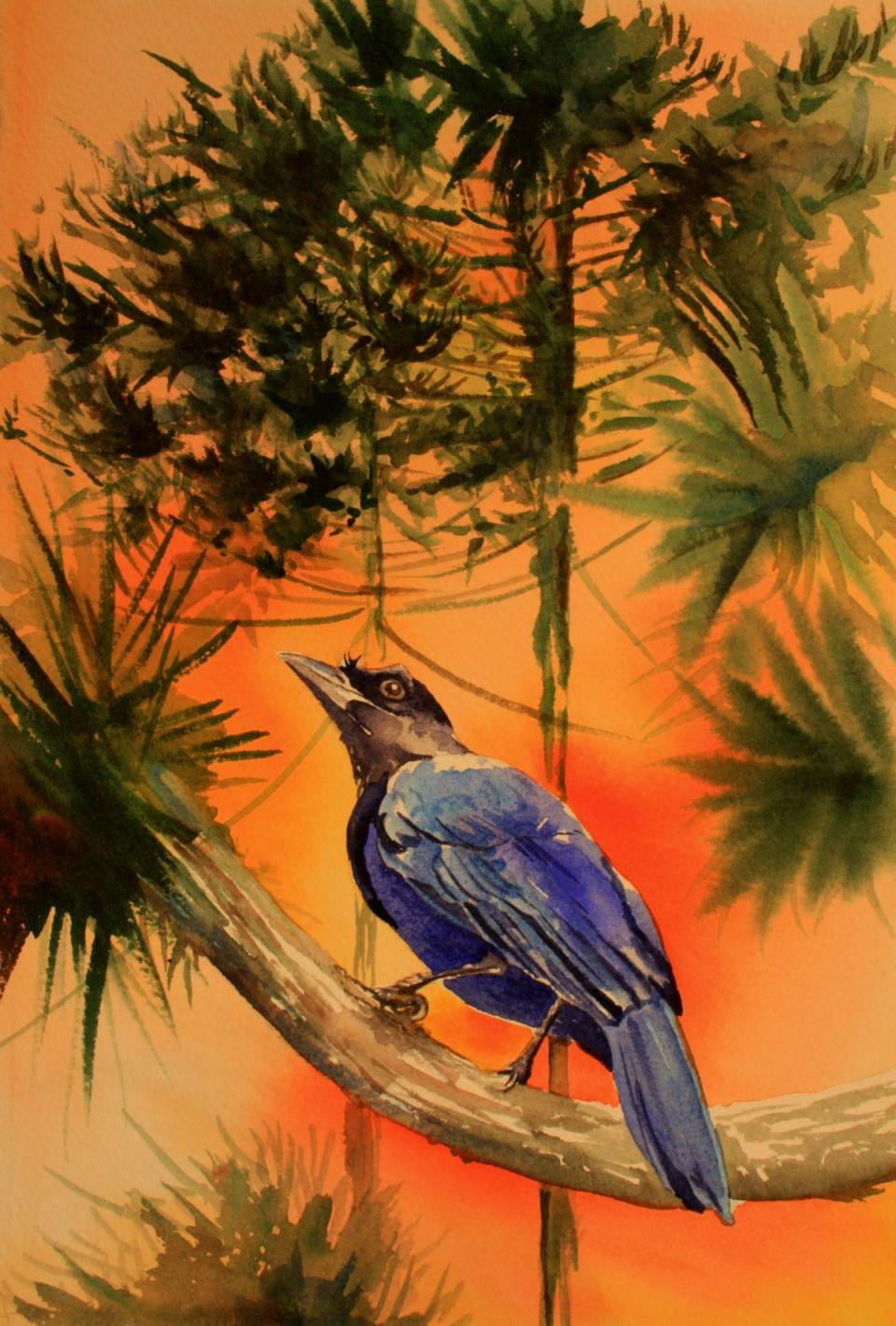 | Wallhanging by Kitty Harvill | Artists for Conservation