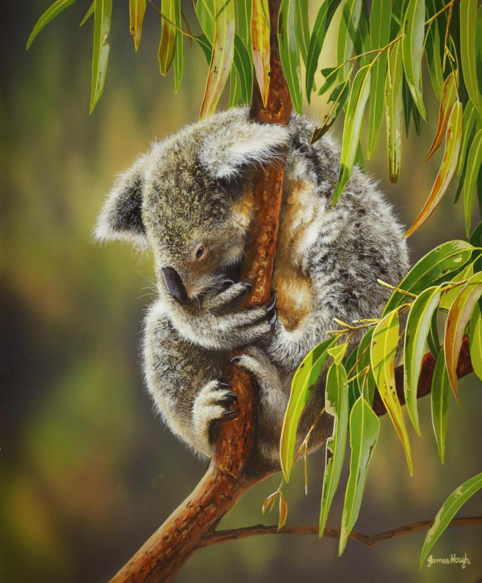 | Wallhanging by James Hough | Artists for Conservation