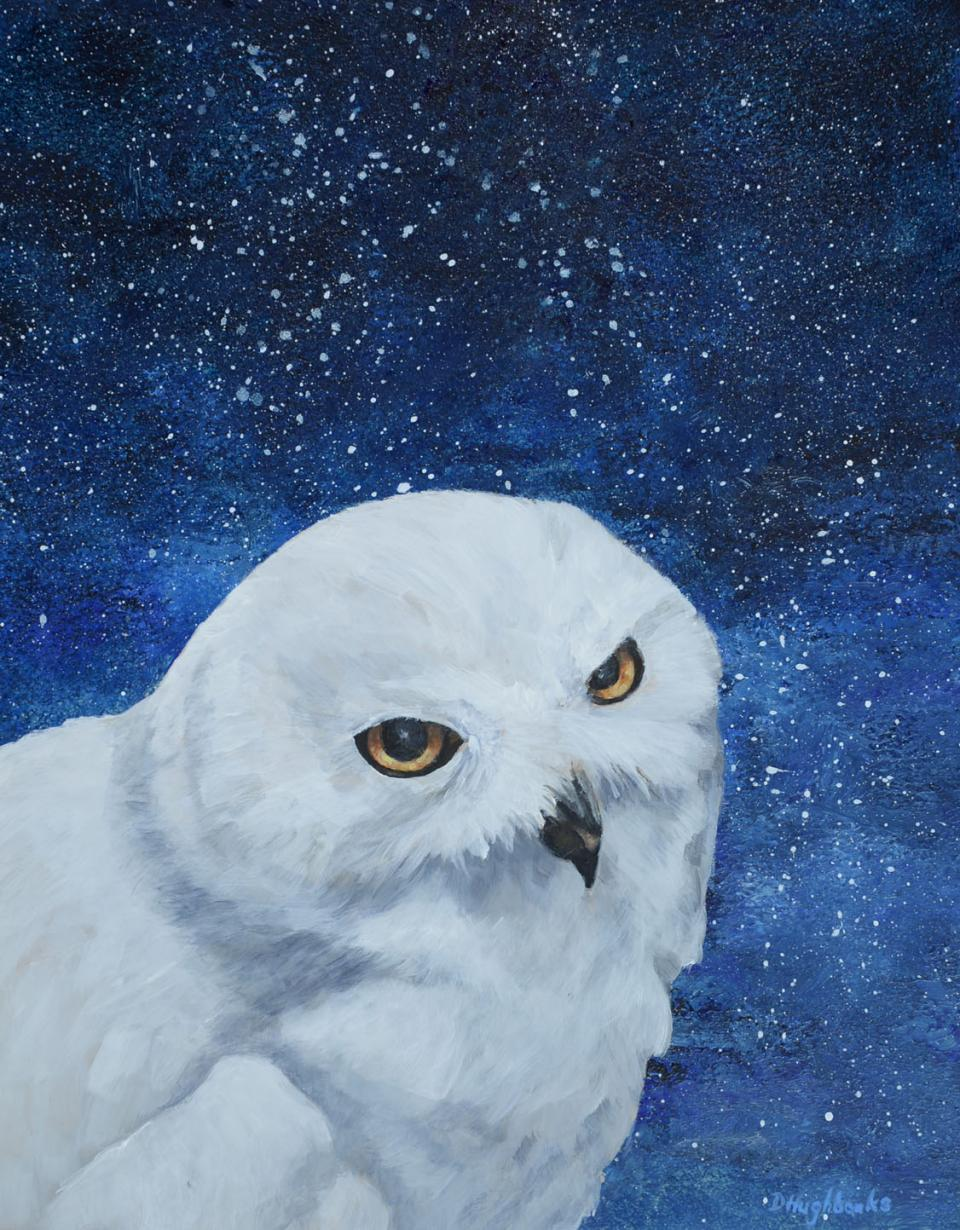Add Artwork   Wallhanging by Debbie Hughbanks   Artists for Conservation
