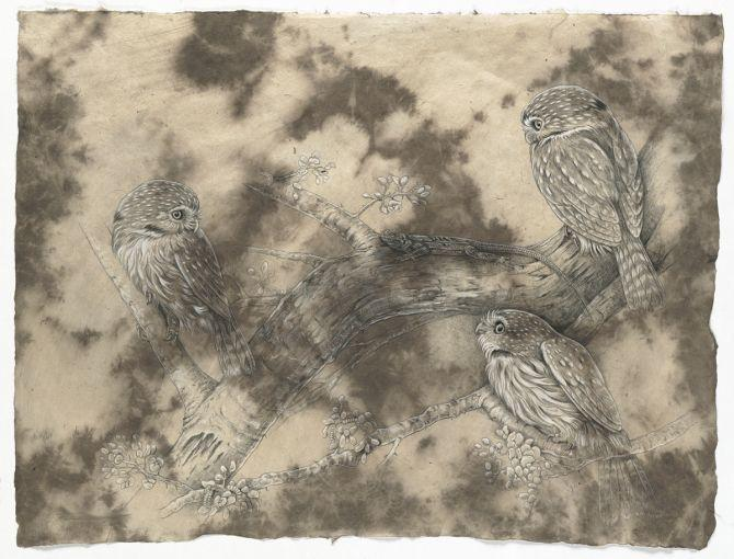 Edit Artwork | Wallhanging by Rachel Ivanyi | Artists for Conservation