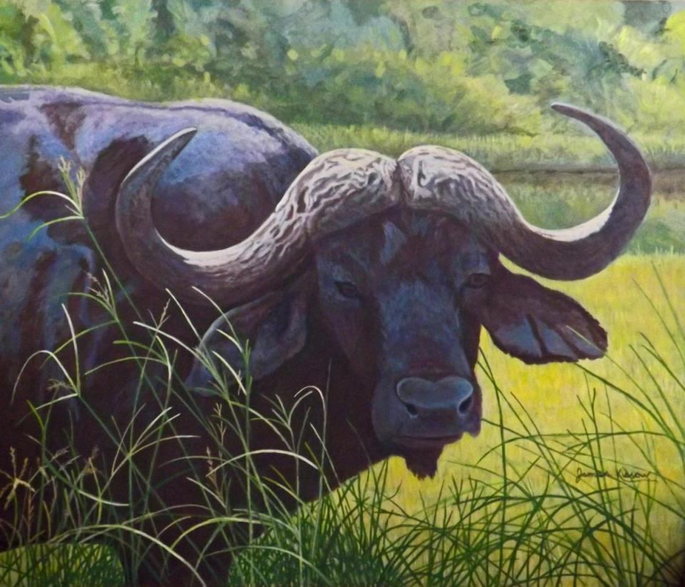 Add Artwork | Wallhanging by James Kiesow | Artists for Conservation