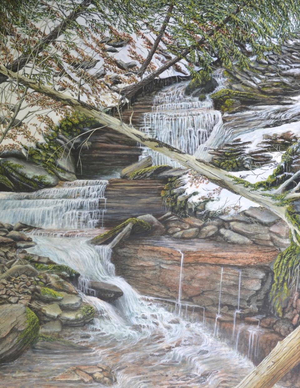 Add Artwork | Wallhanging by C. Frederick Lawrenson | Artists for Conservation