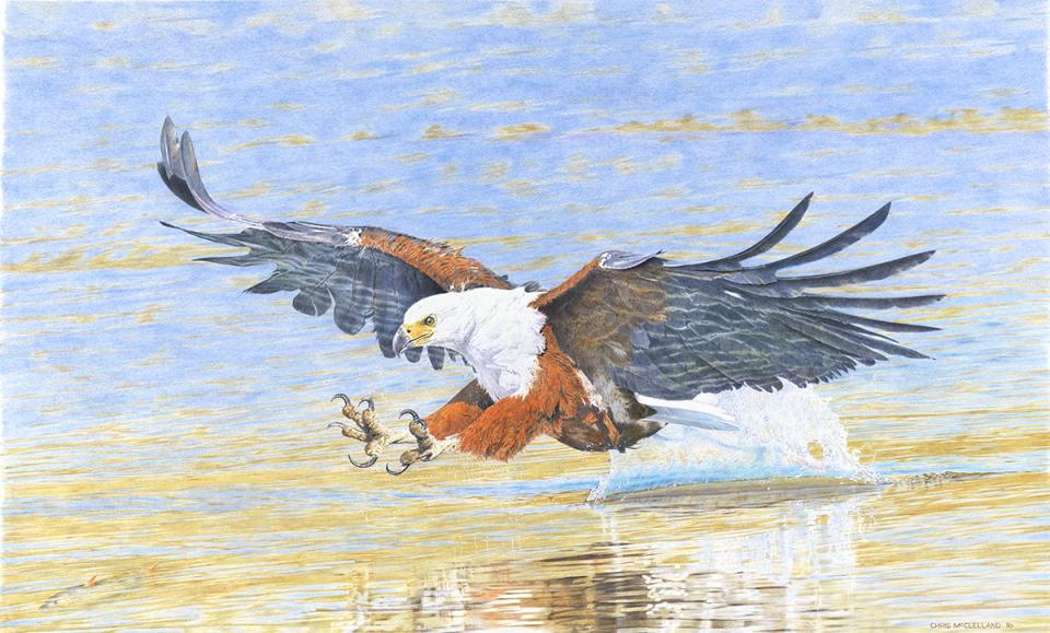 Edit Artwork | Wallhanging by Chris McClelland | Artists for Conservation