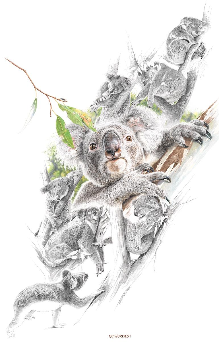 | Wallhanging by Chris McClelland | Artists for Conservation