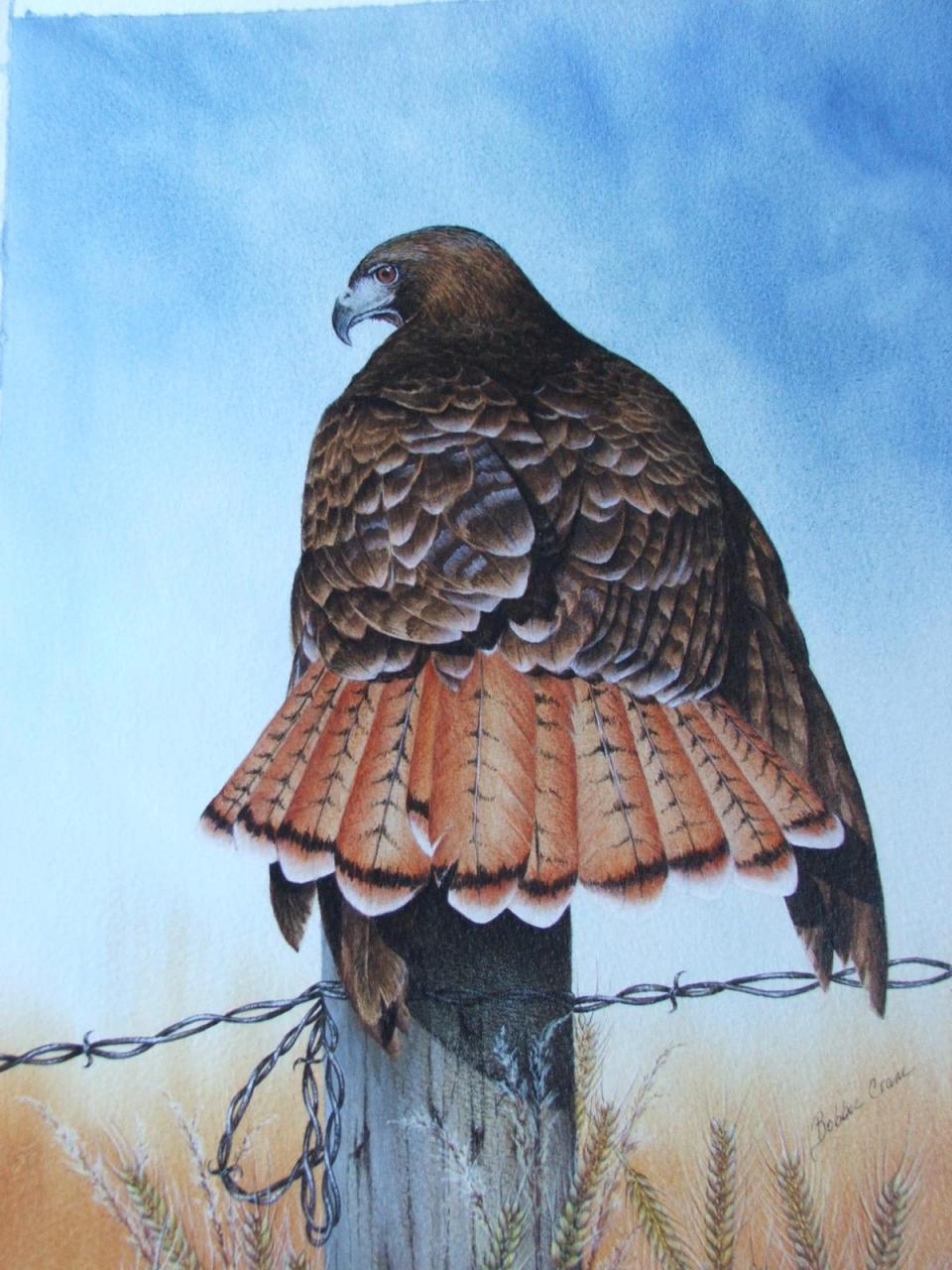 Edit Artwork   Wallhanging by Bobbie Crane   Artists for Conservation
