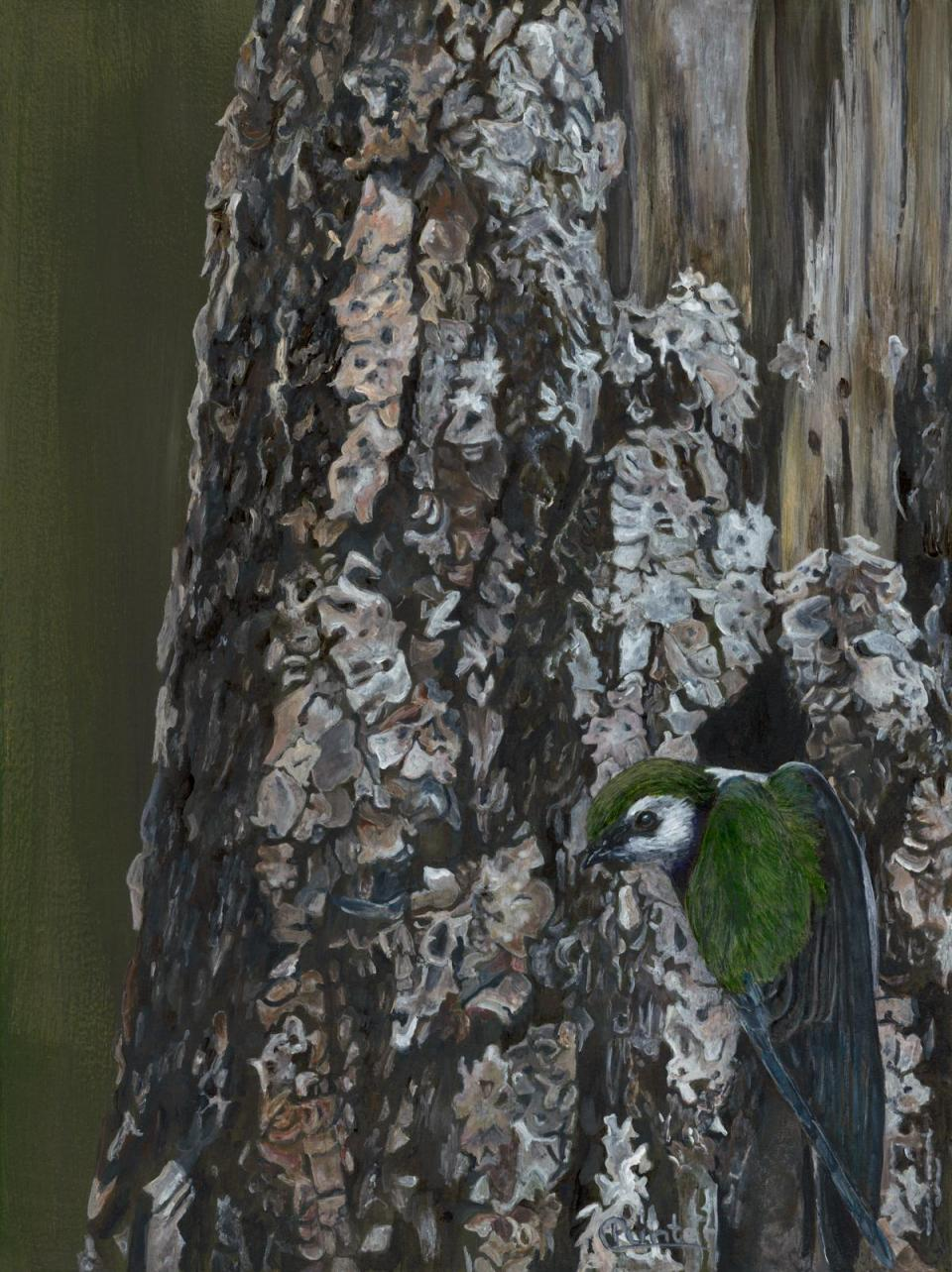 Edit Artwork | Wallhanging by Claudia Punter | Artists for Conservation