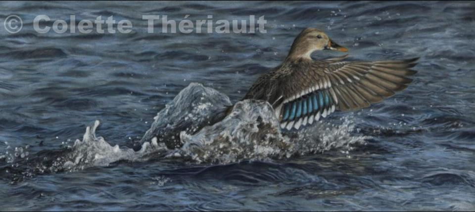 Edit Artwork   Wallhanging by Colette Theriault   Artists for Conservation