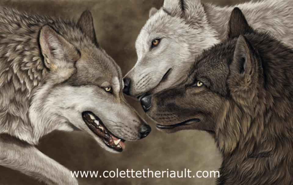 Edit Artwork | Wallhanging by Colette Theriault | Artists for Conservation
