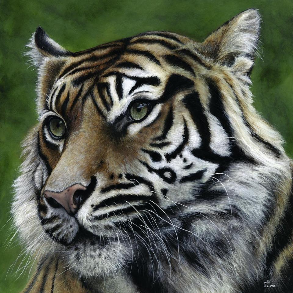 | Wallhanging by Lyn Vik | Artists for Conservation