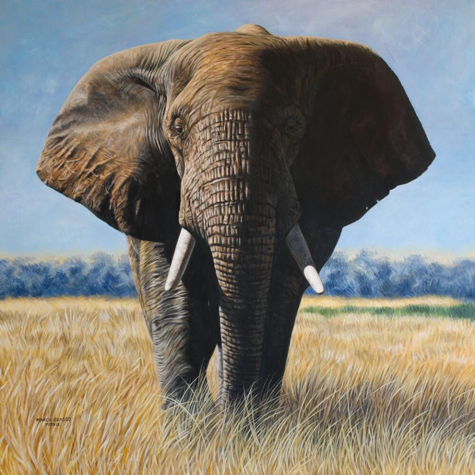 Add Artwork | Wallhanging by Marco Grasso | Artists for Conservation