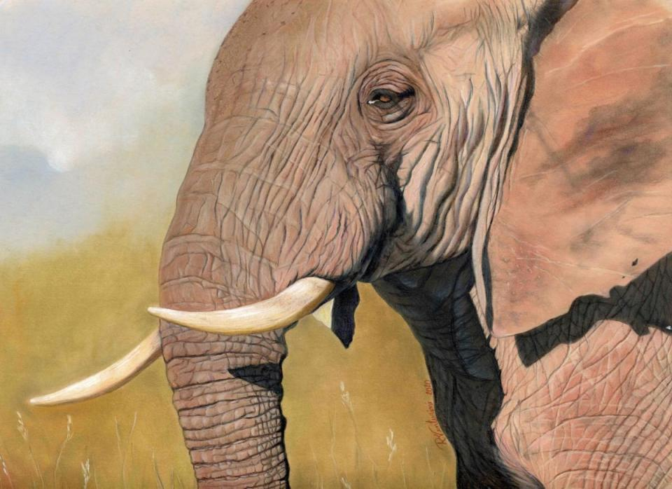 Add Artwork   Wallhanging by Rosana Venturini   Artists for Conservation