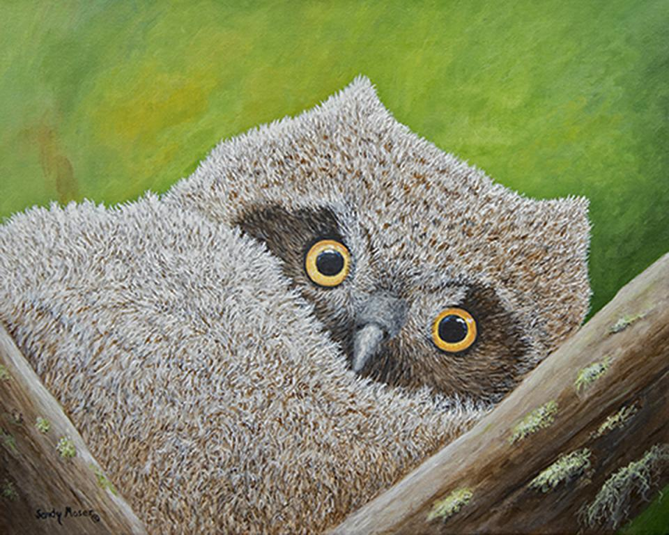 Edit Artwork | Wallhanging by Sandy Moser | Artists for Conservation