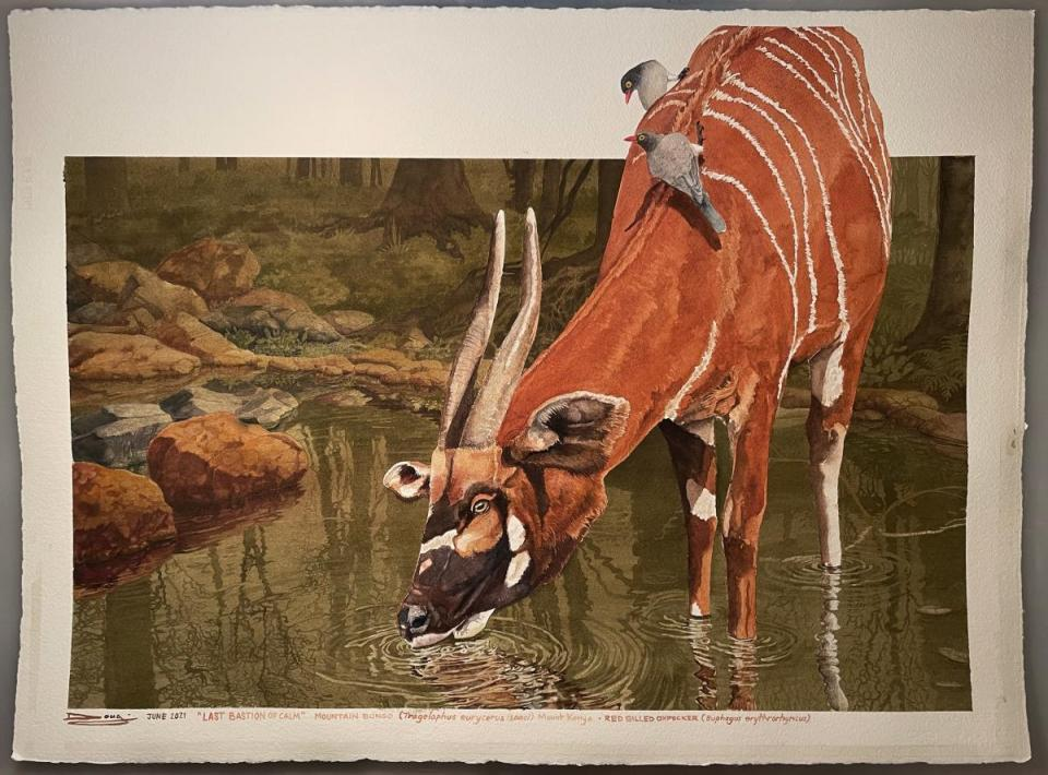Edit Artwork   Wallhanging by Douglass Lockyer   Artists for Conservation
