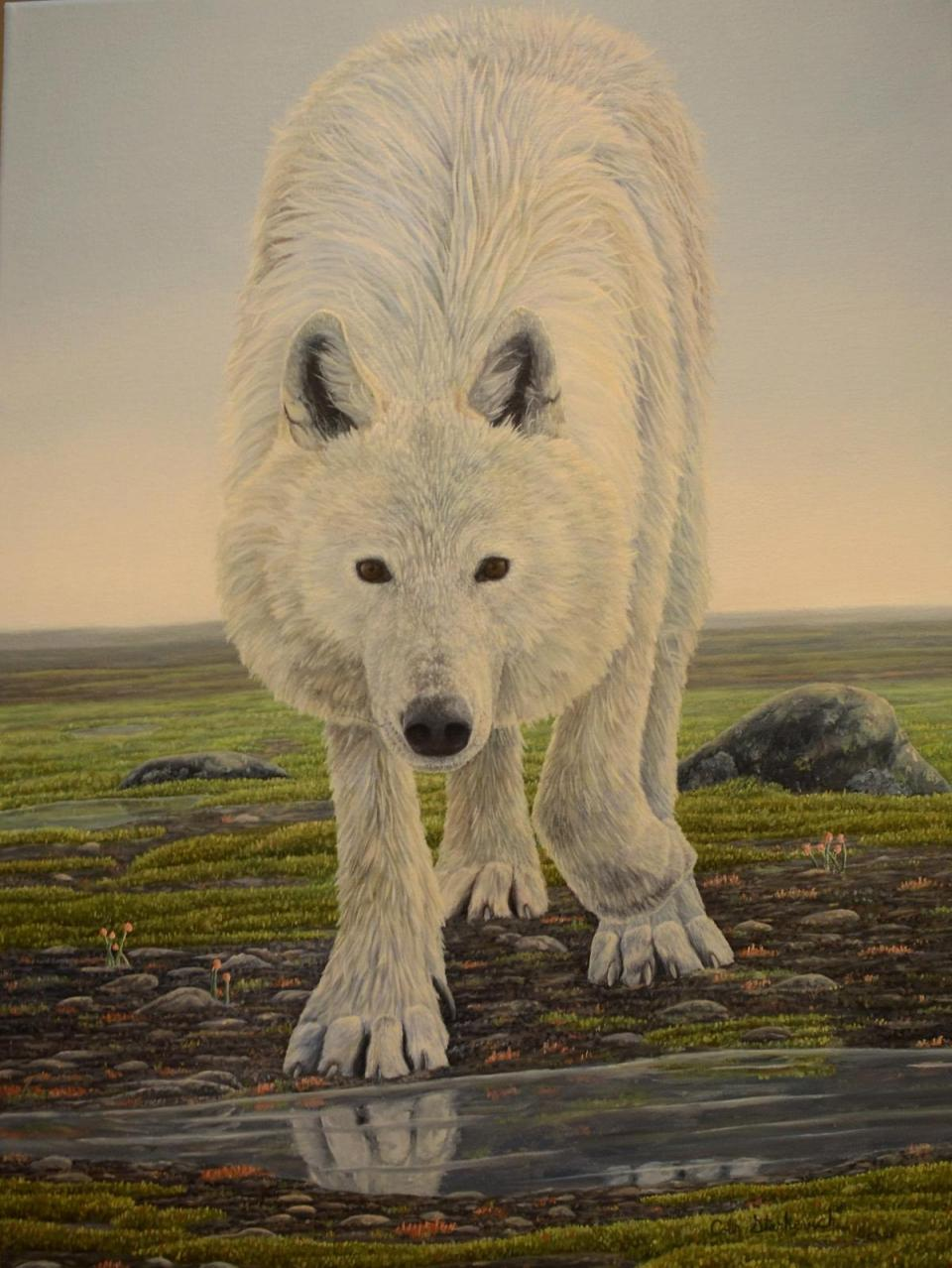 Edit Artwork | Wallhanging by Colin Starkevich | Artists for Conservation