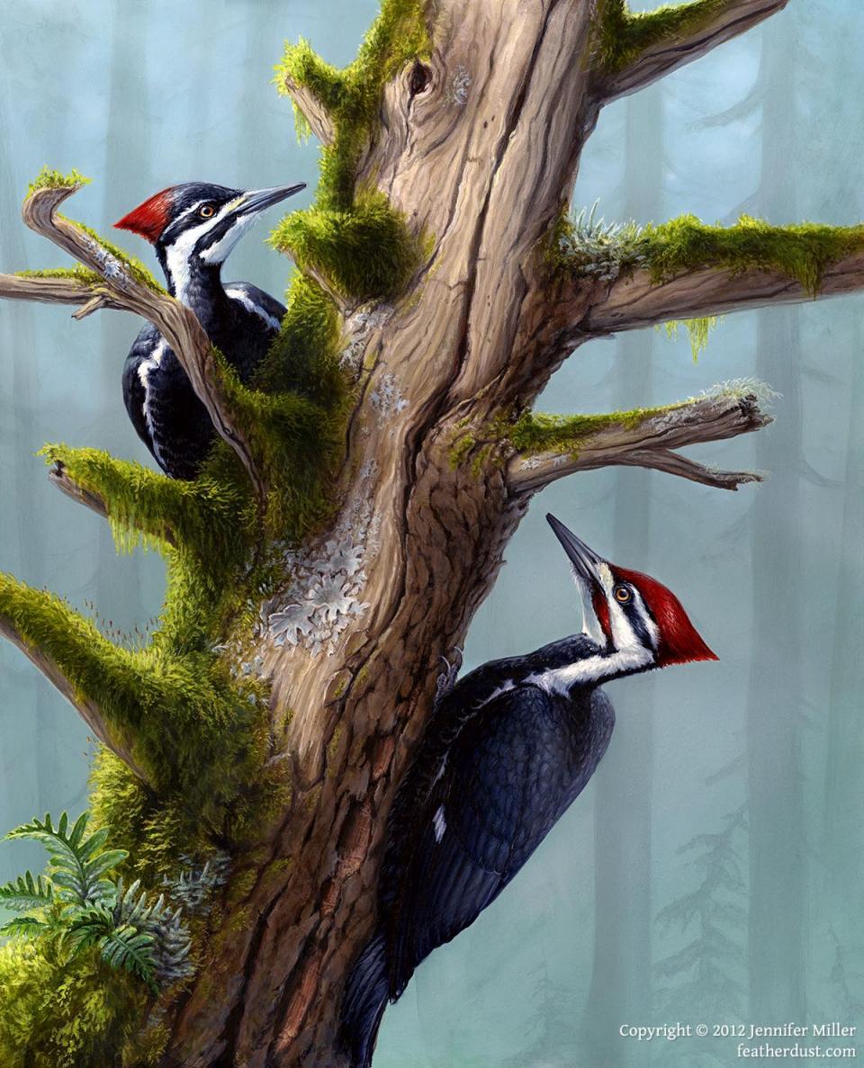 Edit Artwork | Wallhanging by Jennifer Miller | Artists for Conservation