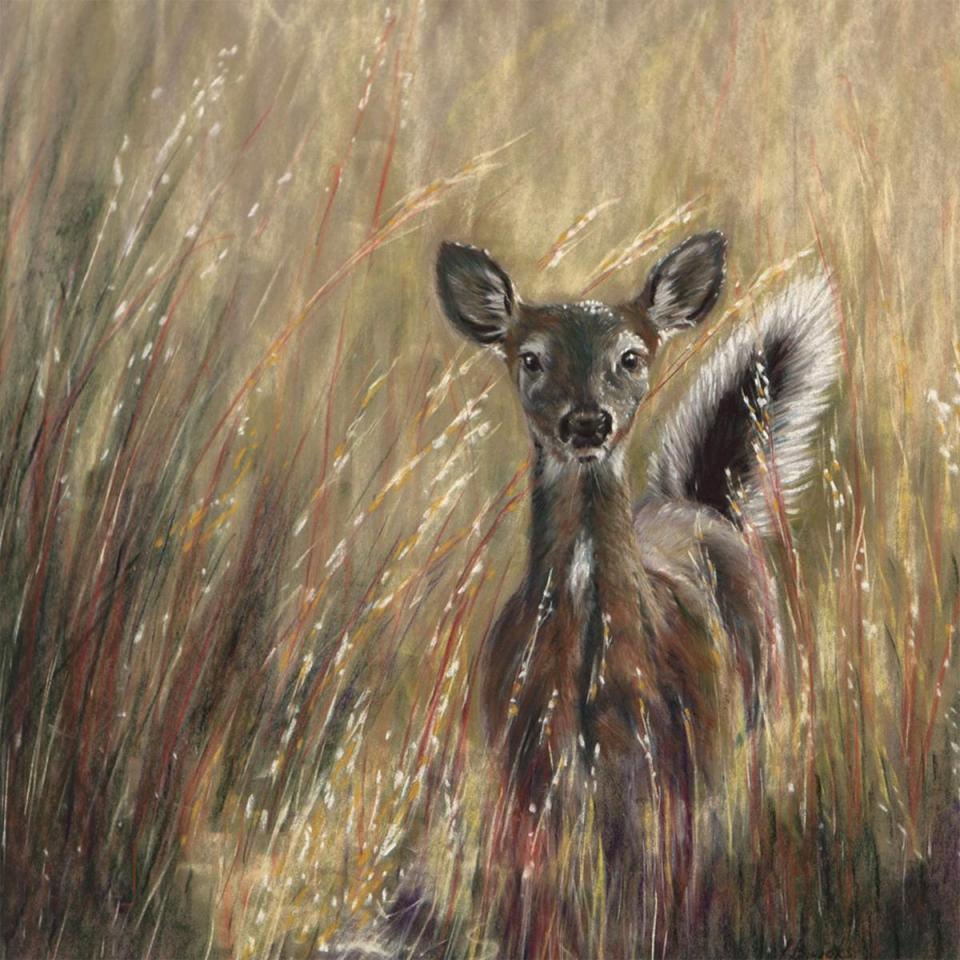 Edit Artwork | Wallhanging by Sandy Brooks | Artists for Conservation