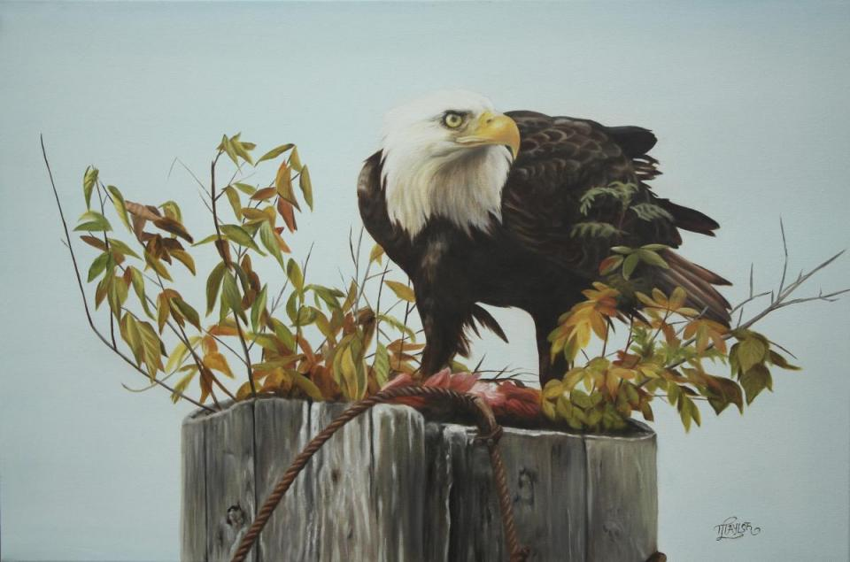 | Wallhanging by Tammy Taylor | Artists for Conservation