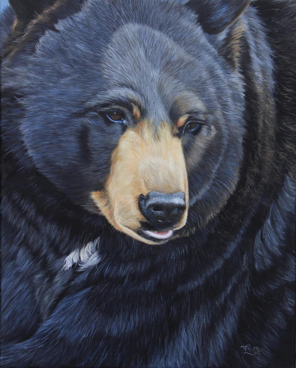 Add Artwork | Wallhanging by Tammy Taylor | Artists for Conservation