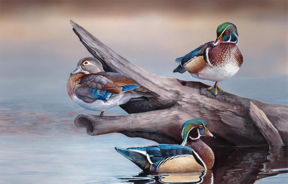 Edit Artwork   Wallhanging by Laura Levitsky   Artists for Conservation