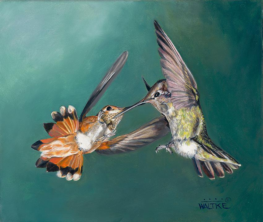 | Wallhanging by Lynn Waltke | Artists for Conservation