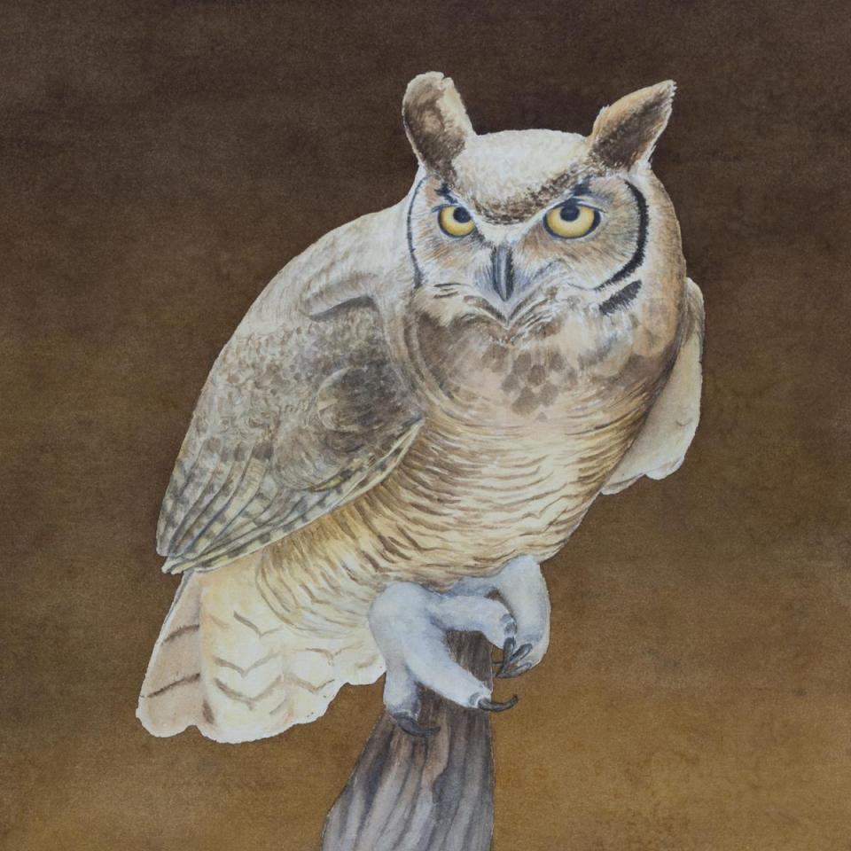 Add Artwork   Wallhanging by Kathy Kleinsteiber   Artists for Conservation